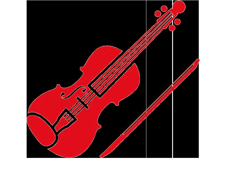 Geige lernen als Erwachsener? - Violinorum